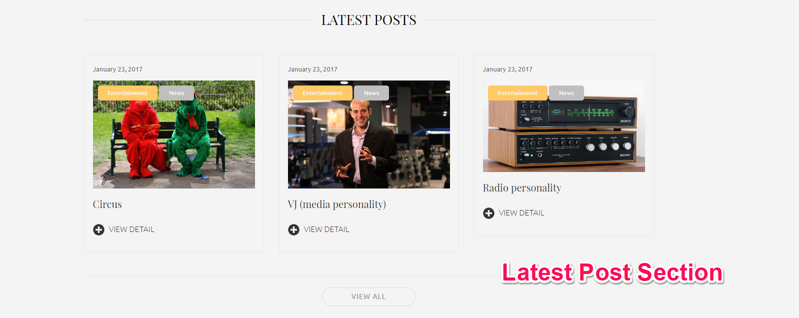 Latest Post Section