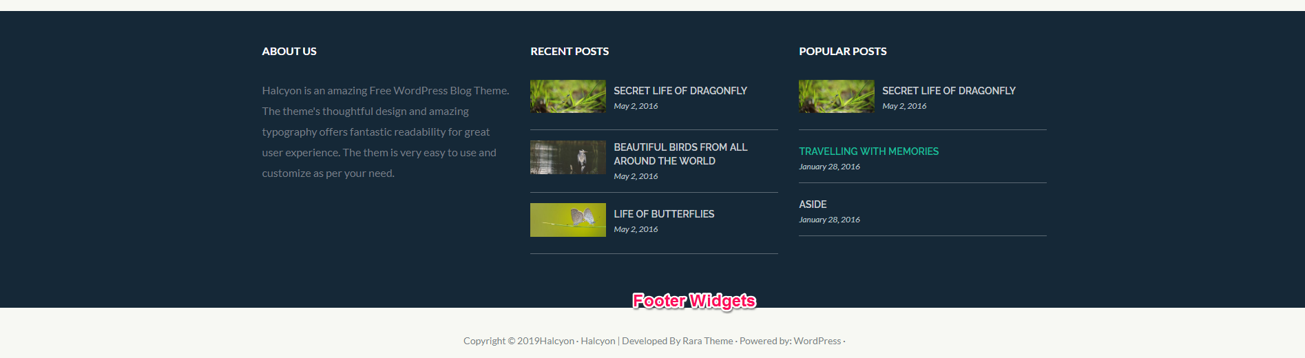 footer widgets for halcyon