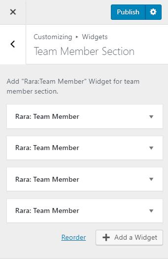 team member section influencer pro