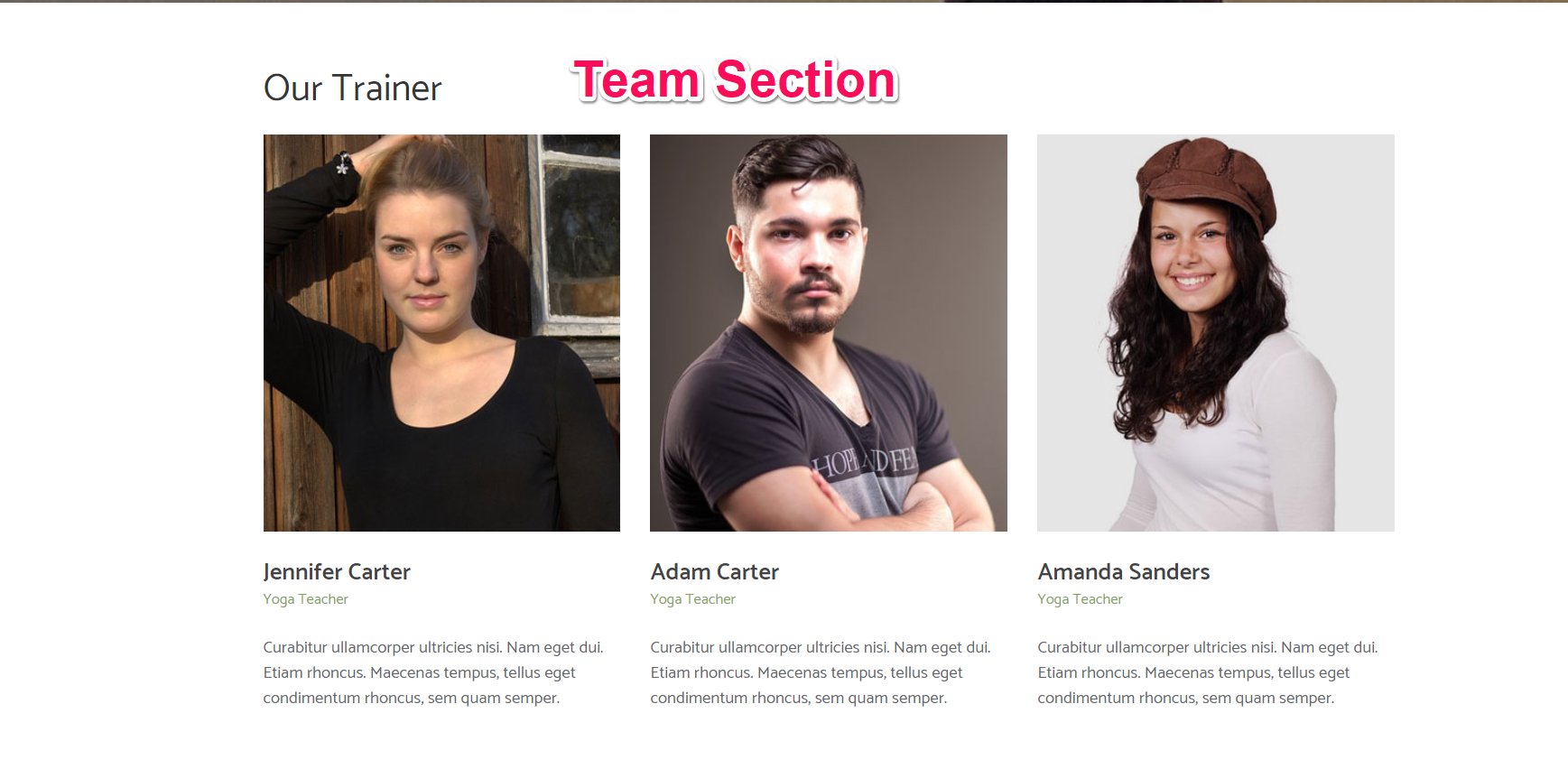 team section